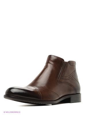 Ботинки Premier. Цвет: темно-коричневый