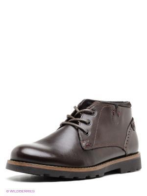 Ботинки Tervolina. Цвет: темно-коричневый