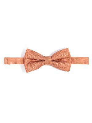Бабочка Troy collezione. Цвет: желтый, оранжевый