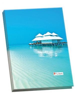 Папка-каталог 40 листов Riviera Paradis. Pierre Cardin. Цвет: белый, голубой