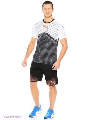 Шорты IT evoTRG Shorts Touch Puma. Цвет: черный