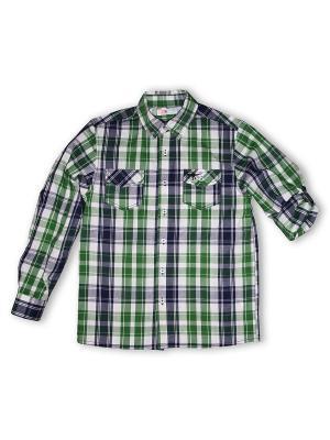 Рубашка Grow up. Цвет: зеленый