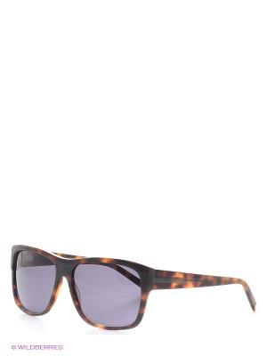Солнцезащитные очки IS 11-296 20P Enni Marco. Цвет: коричневый