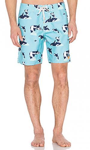 Плавательные шорты whilly Ambsn. Цвет: синий
