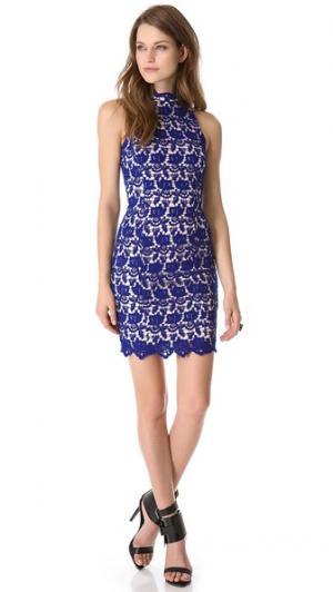 Кружевное платье Peony без рукавов Nicholas. Цвет: кобальт