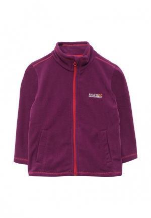 Олимпийка Regatta. Цвет: фиолетовый