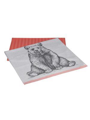 Кухонное полотенце в упаковке 50x70*2 HOBBY HOME COLLECTION. Цвет: персиковый