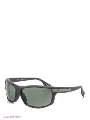 Солнцезащитные очки Alan Blank. Цвет: антрацитовый