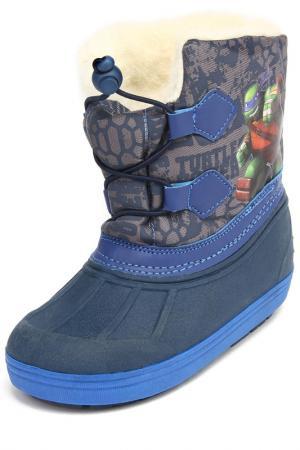 Сапоги Turtles. Цвет: синий, серый