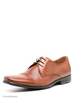 Туфли STEVE MADDEN. Цвет: светло-коричневый
