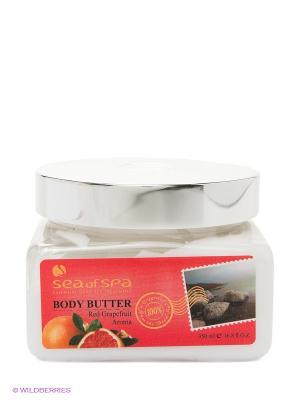 Сливки для тела Красный грейпфрут Sea of Spa. Цвет: белый