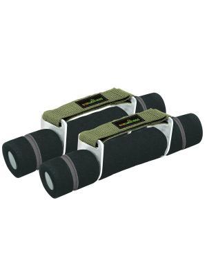 Гантели для аэробики покрытые неопреном 2x0,5 kg Ecowellness. Цвет: серый, зеленый