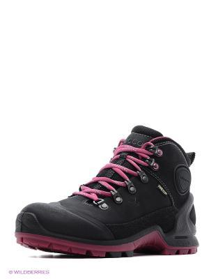 Спортивные ботинки ECCO. Цвет: черный, розовый