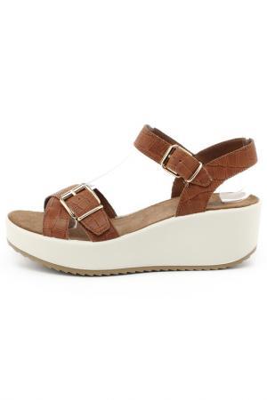 Туфли IMAC. Цвет: коричневый