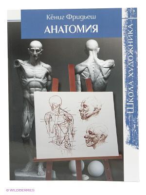 Школа художника: Анатомия КОНТЭНТ. Цвет: белый
