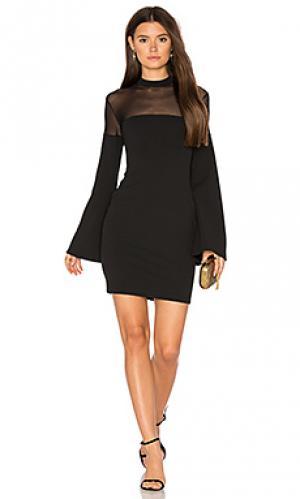 Мини платье sinicity Nookie. Цвет: черный