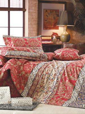 Комплект постельного белья 2 сп. сатин, рисунок 682 LA NOCHE DEL AMOR. Цвет: красный
