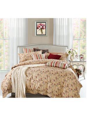 Комплект постельного белья ROMEO AND JULIET. Цвет: светло-коричневый, темно-бежевый