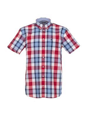 Рубашка Pre End. Цвет: красный, светло-голубой