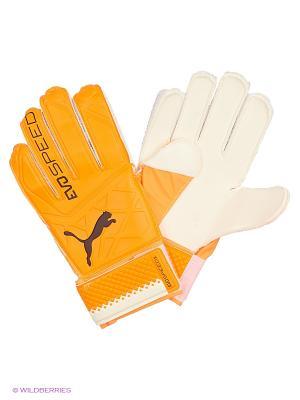 Перчатки вратарские evoSPEED 5.5 Puma. Цвет: оранжевый
