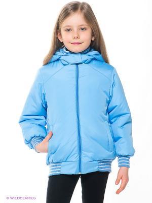 Куртка Avanti Piccolo. Цвет: голубой