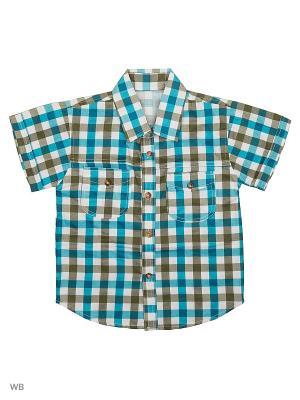 Рубашка Vienetta Kids. Цвет: коричневый, белый, голубой