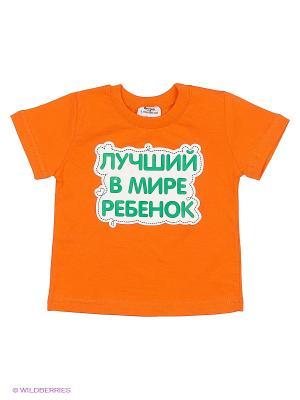 Футболка Ехидна. Цвет: оранжевый
