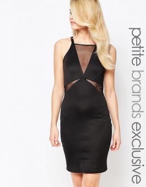 John Zack Petite Облегающее платье без рукавов с глубоким вырезом и сеточкой. Цвет: черный