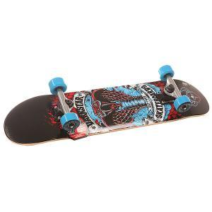 Скейтборд в сборе детский  S6 Python Youth Soft Wheel Mid Blue 29 x 7.25 (18.4 см) Darkstar. Цвет: красный,черный,голубой