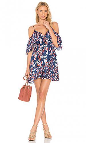 Платье amylia Tanya Taylor. Цвет: синий