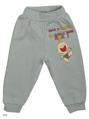 Штаны для новорожденных Bonito kids. Цвет: серый