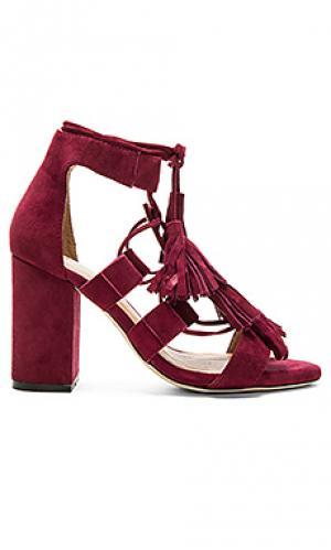 Обувь на каблуке luna RAYE. Цвет: красное вино