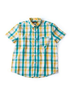 Рубашка I love to dream. Цвет: зеленый