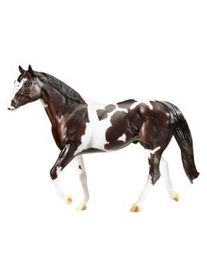 Лошадь Чоколат Чип Киссес - Чемпион мира среди лошадей породы пинто Breyer. Цвет: черный, коричневый, белый