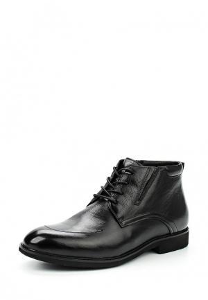 Ботинки классические Dino Ricci. Цвет: черный