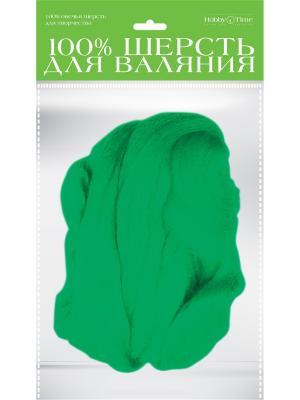 Шерсть для валяния полутонкая (гребенная лента), мятная, 50 гр. Альт. Цвет: зеленый