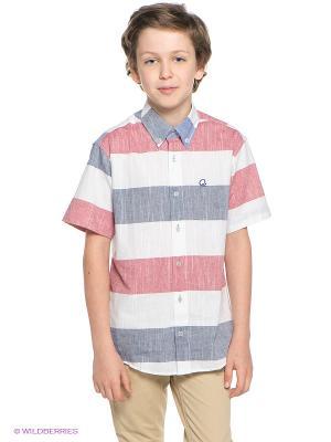 Рубашка Ilgaz kids. Цвет: розовый, белый, серый