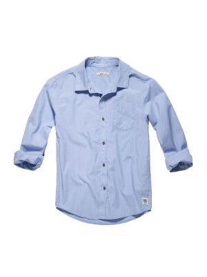 Рубашка FOX. Цвет: голубой