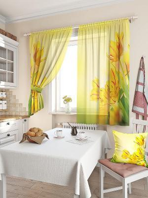 Комплект  штор Тис ТОМДОМ. Цвет: желтый, зеленый