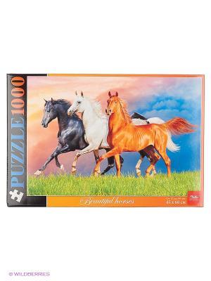 ПАЗЛЫ 1000 элементов  -Красивые лошади- Издательство Хатбер-пресс. Цвет: белый