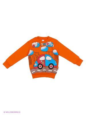 Свитшот Bonito kids. Цвет: оранжевый, рыжий, темно-красный