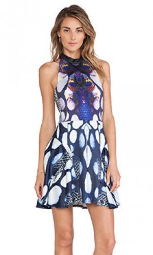 Платье Ringuet. Цвет: синий