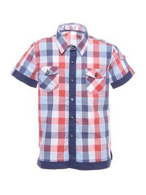 Рубашка DAMY-M. Цвет: синий, голубой