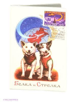 Обложка Mitya Veselkov. Цвет: белый, синий, красный