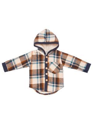Рубашка COOKIES SHEEP. Цвет: коричневый