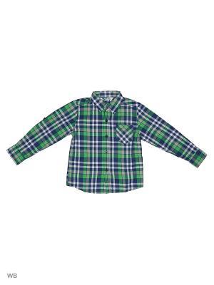 Рубашка Modis. Цвет: зеленый, белый, синий
