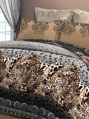 Постельное белье Letto. Цвет: коричневый
