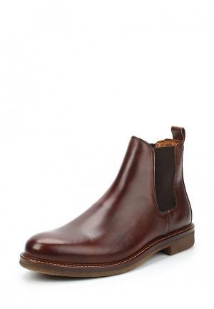Ботинки Zign. Цвет: коричневый