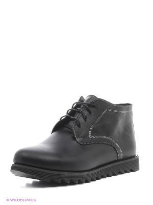 Ботинки Laura Valorosa. Цвет: черный