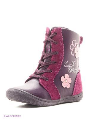 Ботинки Indigo kids. Цвет: бордовый